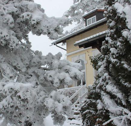 Winter für Kurzentschlossene